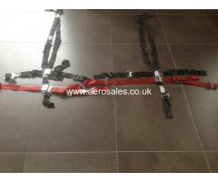 Aerobatic Harness (pitts S2c) Aviat